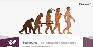 Эволюционное учение Чарлза Дарвина