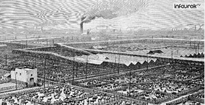 США в 19 – начале 20 вв. - империализм и вступление в мировую политику